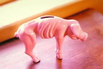 Spaarvarken: niet klaar voor het barbeque-seizoen