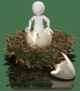 zuiverheid vanuit beleggingsoogpunt