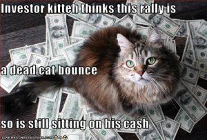heropstanding of dead cat bounce